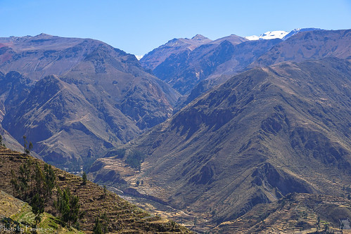 travel peru landscape snow sky andes mountainside colcacanyon nature mountain tree grass