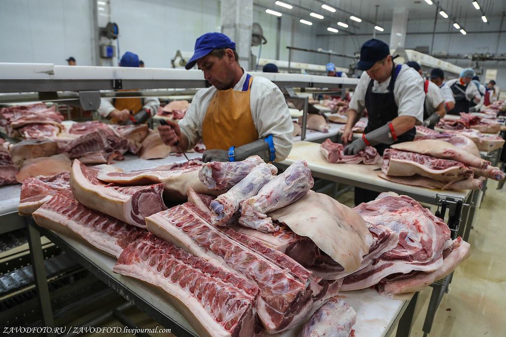 Топ-25 крупнейших производителей мяса в России. Группа, Агропромышленный, холдинг, Компания, компаний, ГРУПП», Агрохолдинг, «КОМОС, производители, «СИТНО», «Ариант», Агропромышленная, «Равис», «Хорошее, Агрогруппа, Ферма», «Здоровая, дело», Холдинг, корпорация