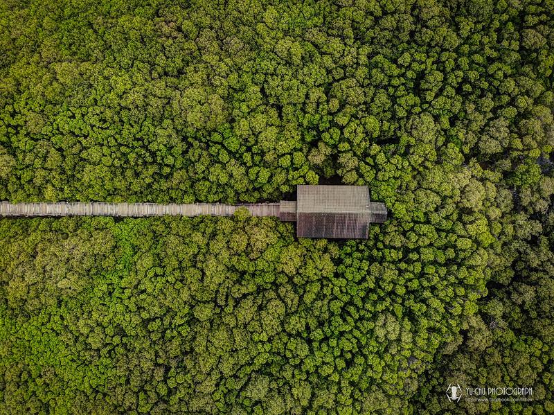 新豐紅樹林空拍
