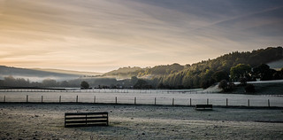 Morning frost | by designfabric57