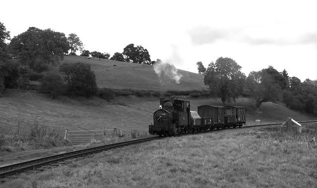 Goods Train Approaching Heniarth