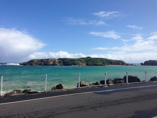 Middle Island, Warrnambool