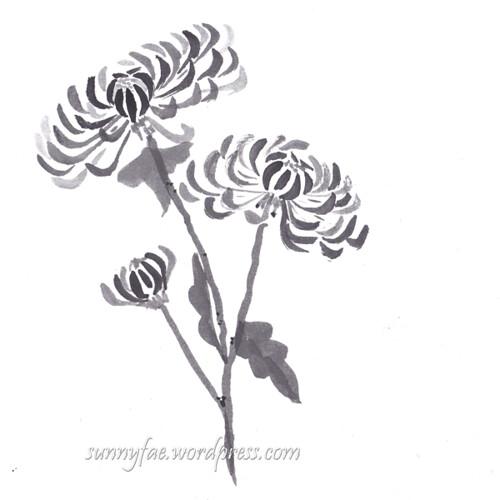 inktober chrysanthemum day 8