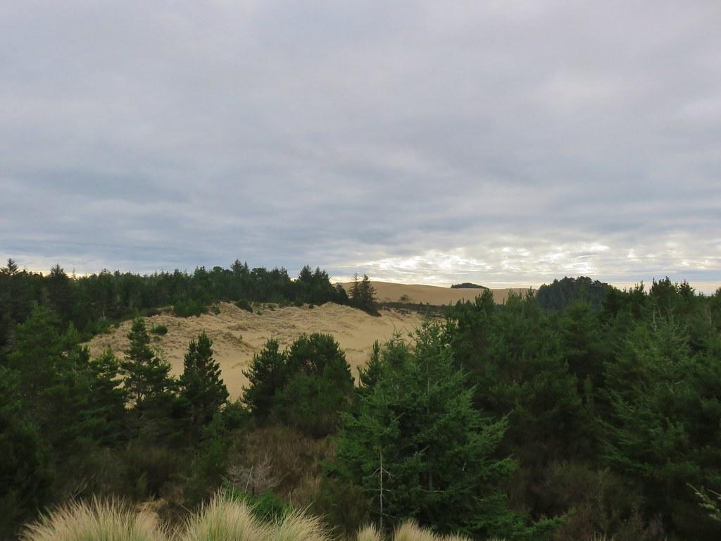 Jessie M. Honeyman State Park