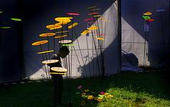 Cazador del sol (2/2-Curiosité étonnée.)