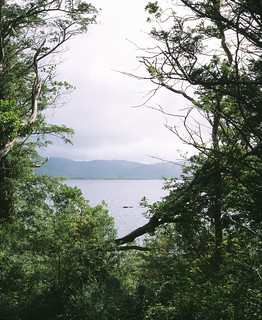 Muckross Lake, Killarney