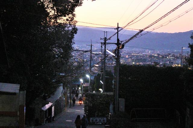 shisendo-koyo054