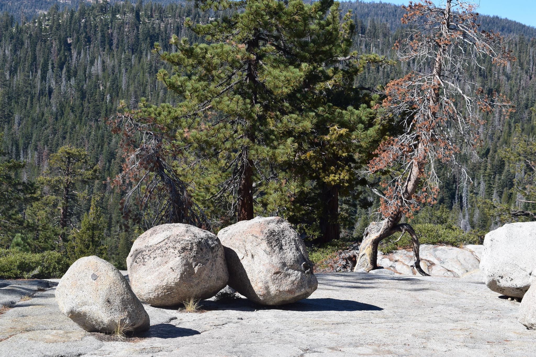 Yosemite National Park-Tuolumne Road to Tioga Pass-Random Rocks