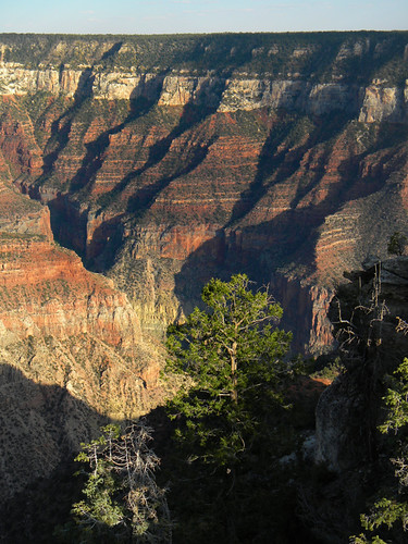 Looking down at the coloured land formations at the North Rim of the Grand Canyon, Arizona