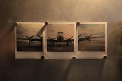 Tempelhof.roid