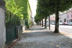 Avenue de Lierneux in Montigny le Roi (Val-de-Meuse)