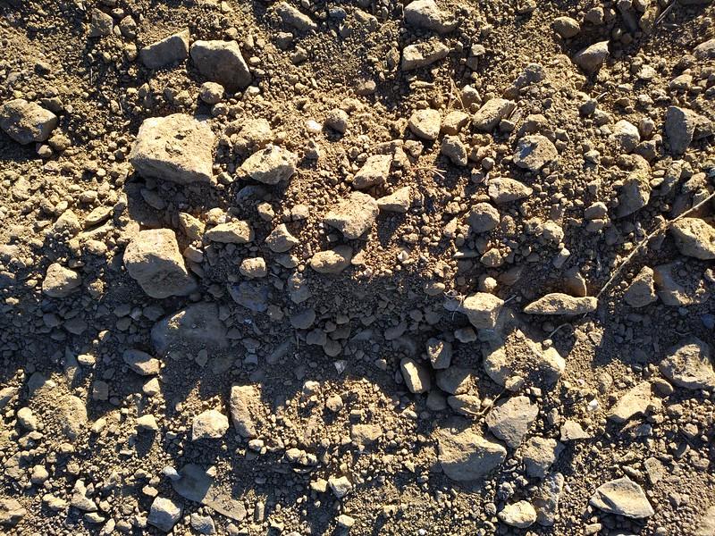 Ground texture #19