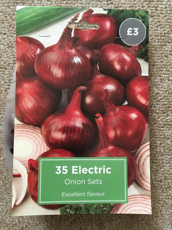 Electric onion sets