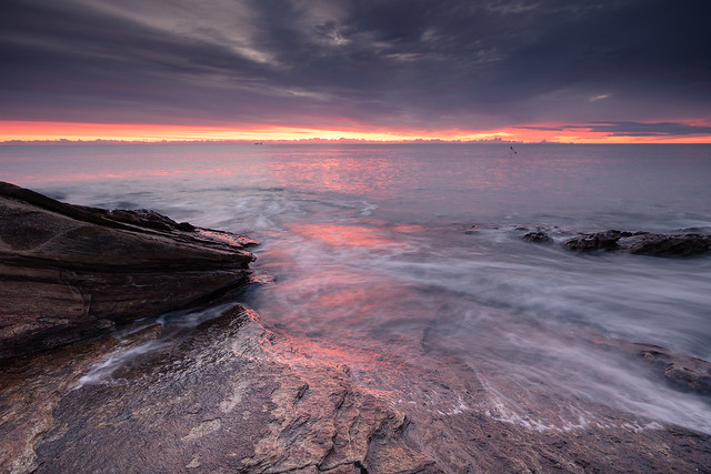 Gilded Shoreline