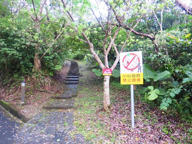 仁山植物園8