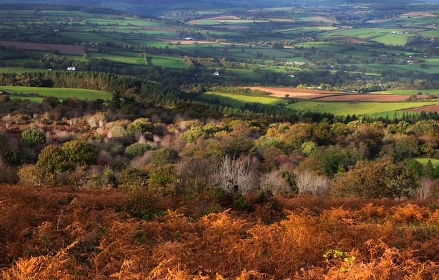 Early autumn, Kit Hill