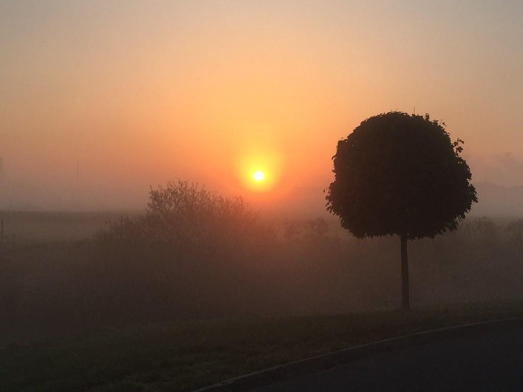 08:18:11 We had mist
