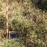 Exhumación Geras de Gordón (León)