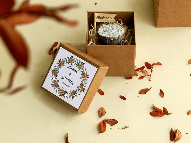 Bomba de semillas en caja individual