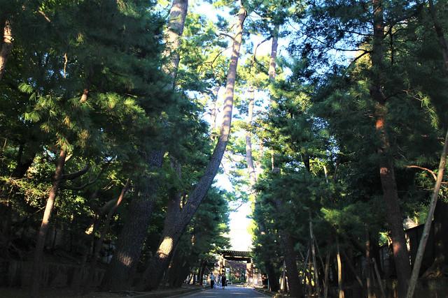 goutokuji068