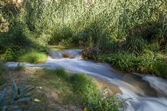 Las sedas de río Tuéjar