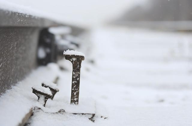 Let it snow, Nikon D90, AF Nikkor 50mm f/1.8D
