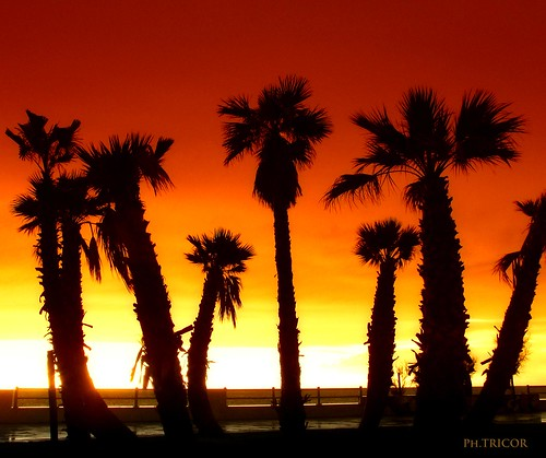 Quando il sole è tramontato, nessuna candela può sostituirlo_When the sun has set, no candle can replace it