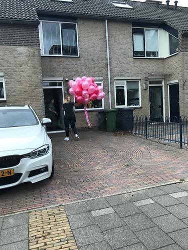 Heliumballonnen Roze Fuchsia Rozenburg