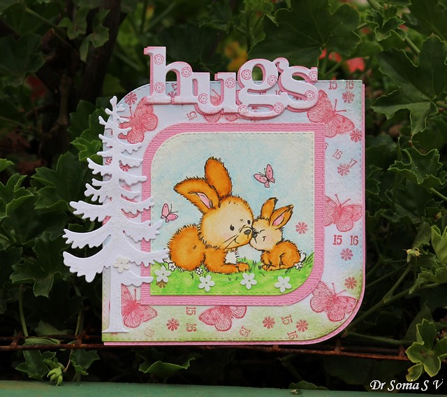 dr_sonia_coordinating_die_Stamped Bunny Card  1