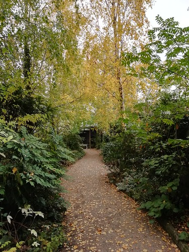 Autumn time at Delta Sensory Gardens Carlow