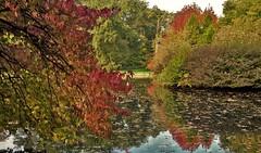 Herfst / Fall / Autumn