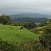 A Saturday Saunter Around Delightful Dunnerdale