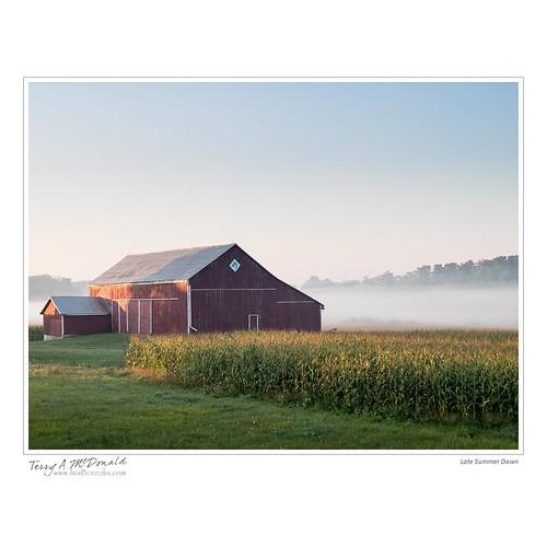 barnredbarn bluesky canada cornfield dawn farm farmland fiferoad fog guelph iphone8plus iphoneography landscape morning ontario rural scenery sunrise wellingtoncounty