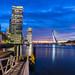 Zonsondergang Rotterdam-15.jpg