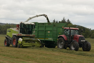 Claas Jaguar 890 SPFH filling a Smyth Trailers Field Master Trailer drawn by a Case IH Puma 155 Tractor