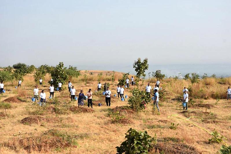 हाथीपावा पर गर्मियों में पानी देने का श्रमदान