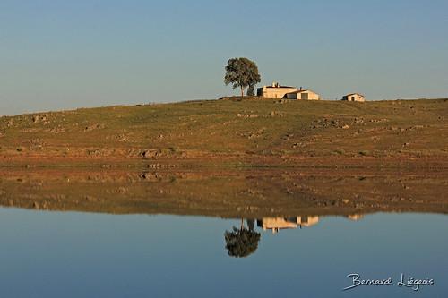 Lac de Sierra Brava   lake   embalse