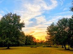 Sunset 11.3.18