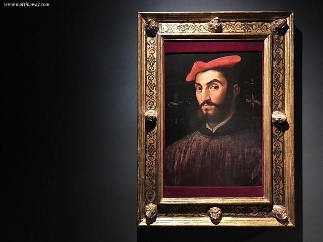 Ritratto di Ippolito de' Medici, Sebastiano del Piombo