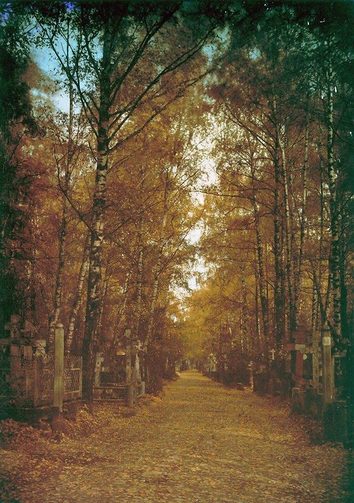 Аллея в Арском кладбище. 1911