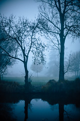 Mysterious morning