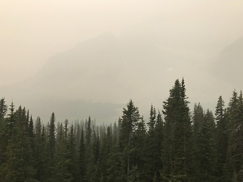 A smoky view during the drive to Jasper
