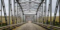 Buffalo Bridge