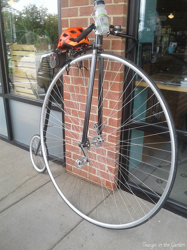 5-Turn of the Century Bike