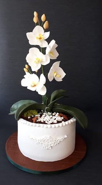 Flower Cake by Irma K-iene