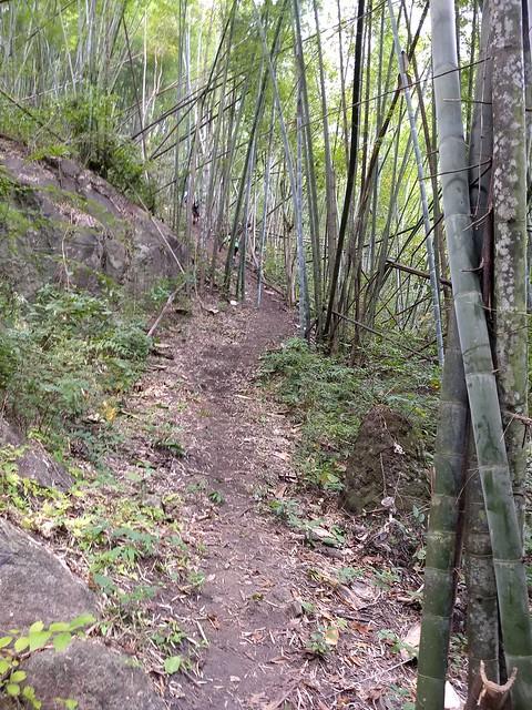 ตะนาวศรีเทรล 2017 TNT60 (Tanaosri Trail 2017)