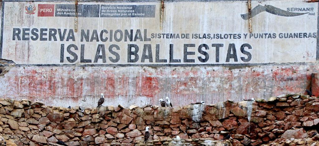 J29 : 16 octobre 2018 : Islas Ballestas