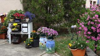Viele Blumen in Radeburg alles Glück und Freude und wundersame Kraft 00138