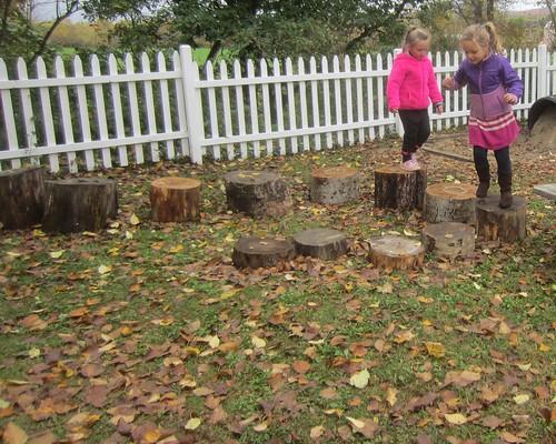 walking the stumps