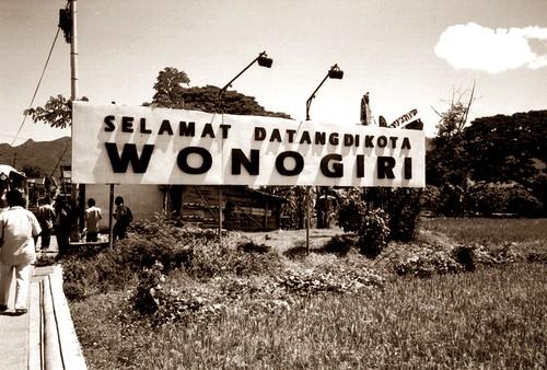 QnC Jelly Gamat Area Wonogiri